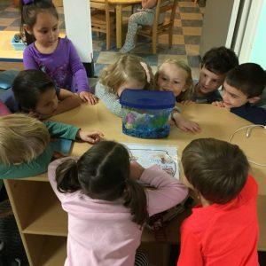 preschoolpicfish